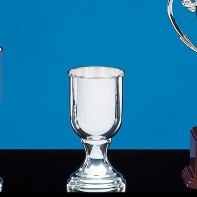 Tournament Cup (Small)