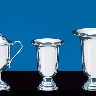 Regency Cup