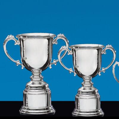Sheffield Award